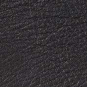 Black/Titanium